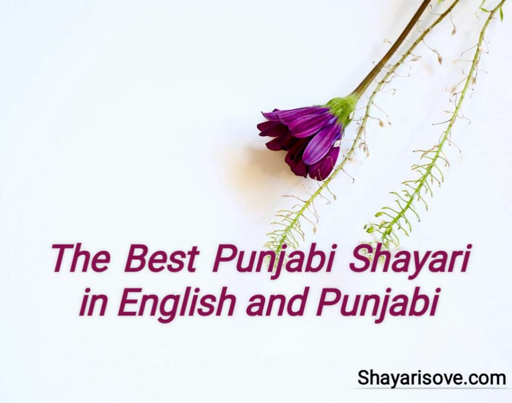 The Best Punjabi Shayari in English and Punjabi