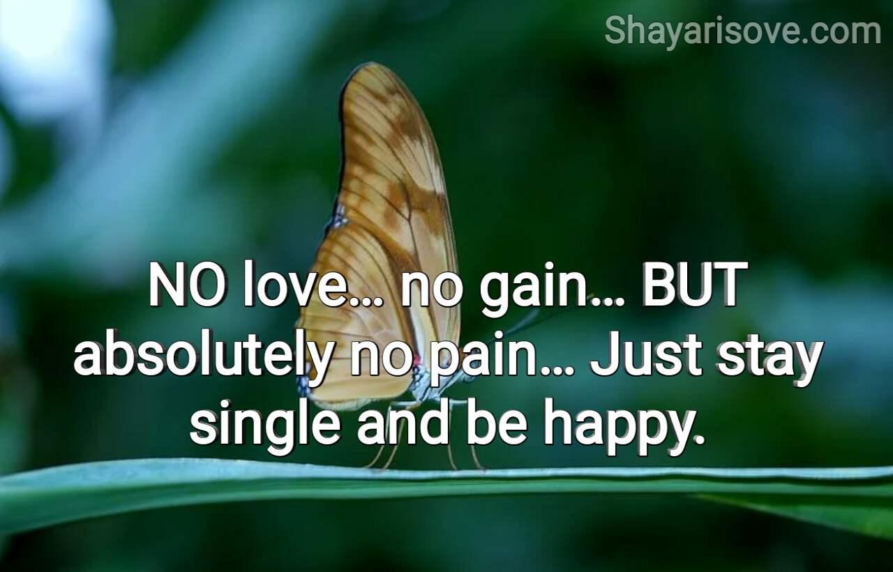 No love no gain